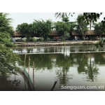 Sang hồ câu cá giải trí + ẩm thực 558/45B Bình Quới
