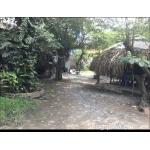 Cần sang quán ăn sân vườn (1000m2) Mặt tiền đường Nguyễn Cửu Phú