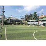 Sang - bán sân bóng, hồ bơi sân patin 3779m2