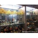 Cần thanh lý shop Phong thủy - Phật giáo 13 Nguyễn Văn Nghi