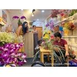 Sang shop hoa đang kinh doanh tốt 181A Phan Văn Trị, Bình Thạnh